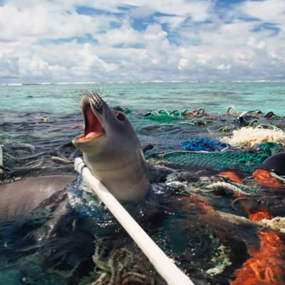 Finally Getting The Plastic Pollution Out Of The Ocean ...